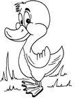 dessin enfant Canards