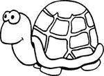 dessin enfant Tortues